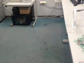 Before carpet cleaning Schiphol