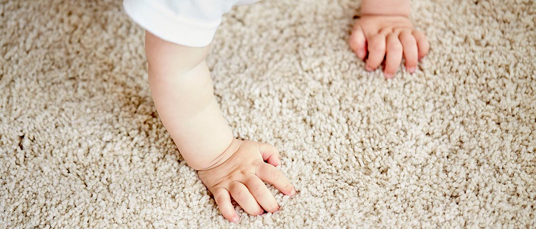 Careful carpet cleaning by UCC Services